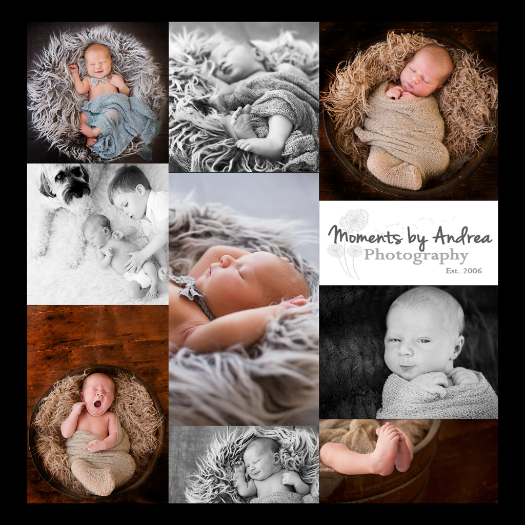 newborn collage ad web